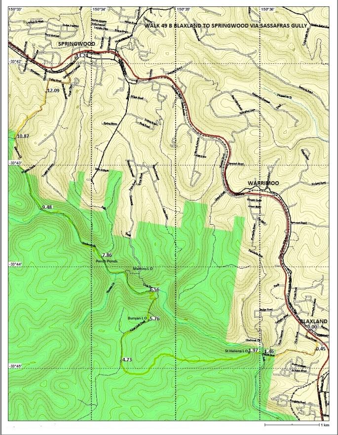 walk-49-b-blaxland-to-springwood-via-sassafras-gully