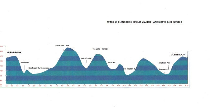 walk-63-glenbrookk-circuit-via-red-hands-and-euroka